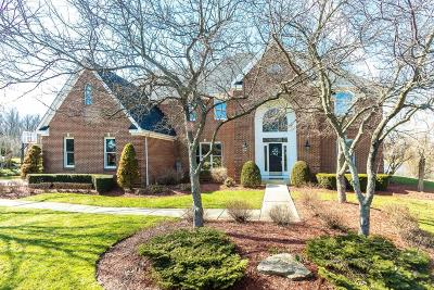 Westerville Single Family Home For Sale: 5830 Heron Court