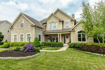 Westerville Single Family Home For Sale: 5389 Medallion Drive W