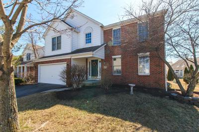 New Albany Single Family Home Contingent Finance And Inspect: 6387 Albany Gardens Drive