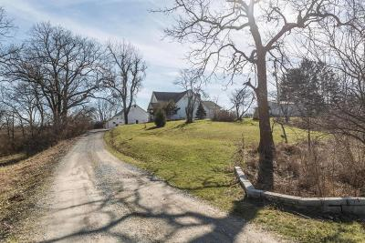 Delaware Single Family Home For Sale: 6863 Merchant Road