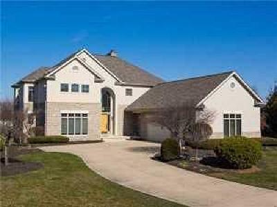Westerville Single Family Home Contingent Finance And Inspect: 6922 Temperance Point Street
