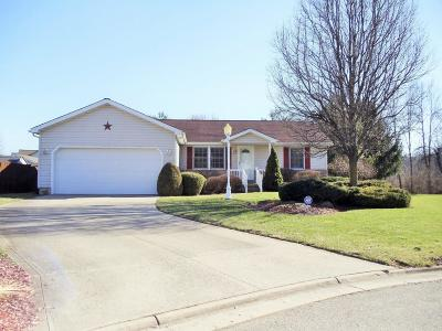 Chillicothe Single Family Home For Sale: 207 Grant Drive