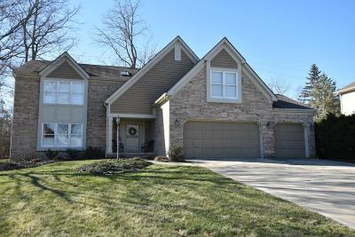 Dublin Single Family Home For Sale: 4546 Dunleary Drive