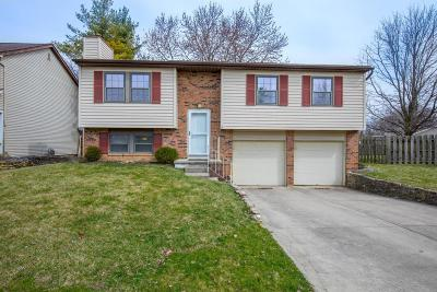 Dublin Single Family Home Contingent Finance And Inspect: 5592 Donnally Court
