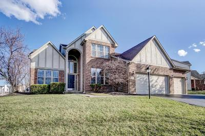 Pickerington Single Family Home For Sale: 665 Theron Drive