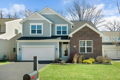 Lewis Center OH Single Family Home For Sale: $369,900