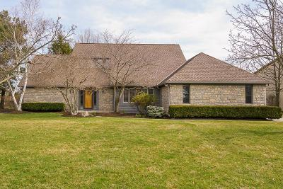 Dublin Single Family Home For Sale: 8652 Finlarig Drive