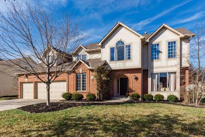Dublin Single Family Home For Sale: 6154 Wigeon Court