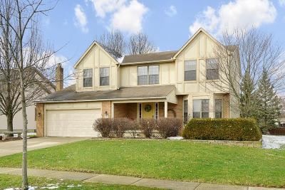Grove City Single Family Home For Sale: 3375 Grovepark Drive