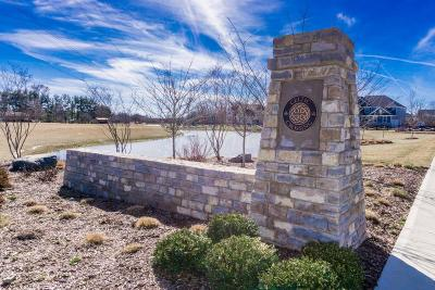Union County Single Family Home For Sale: 8258 Macha Court #7