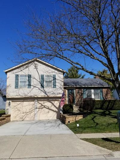 Dublin Single Family Home Contingent Finance And Inspect: 3962 O Shannon Road