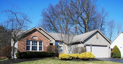 Westerville Single Family Home For Sale: 6316 Commonwealth Drive