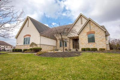 Pickerington Single Family Home Contingent Finance And Inspect: 13865 Paragon Drive