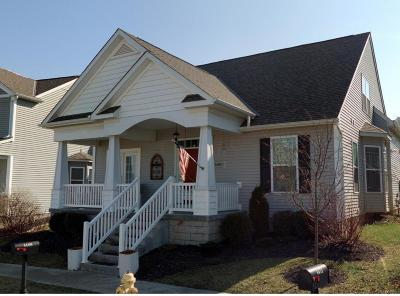 Grove City Single Family Home Contingent Finance And Inspect: 4468 Snowy Meadow Drive