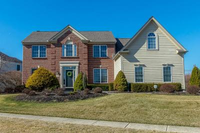 Westerville Single Family Home For Sale: 7670 Early Meadow Road