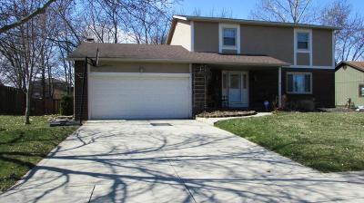 Grove City Single Family Home For Sale: 6185 Hickory Lawn Court