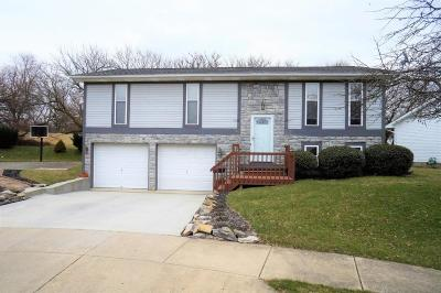 Single Family Home Contingent Finance And Inspect: 56 Anna Way