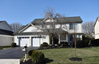 Dublin Single Family Home Contingent Finance And Inspect: 6871 Erie Court