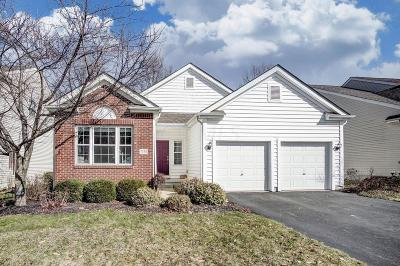 New Albany OH Single Family Home For Sale: $234,908