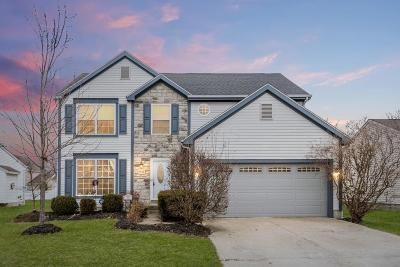 Single Family Home For Sale: 7958 Waggoner Run Drive