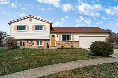 Hilliard Single Family Home Contingent Finance And Inspect: 5668 Converse Court