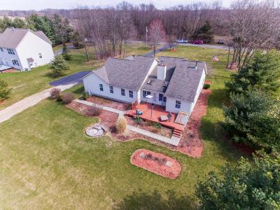 Delaware Single Family Home For Sale: 158 Big Run Road