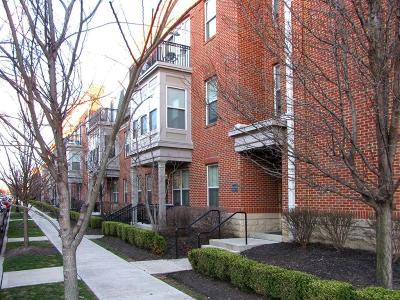 Columbus Condo For Sale: 936 Perry Street #116