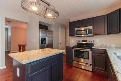 Single Family Home For Sale: 7973 Blacklick View Drive
