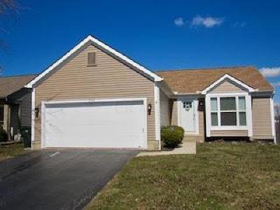 Single Family Home For Sale: 8142 Creekstone Lane