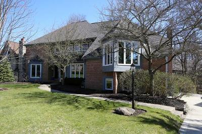 Columbus Single Family Home For Sale: 810 Pipestone Drive