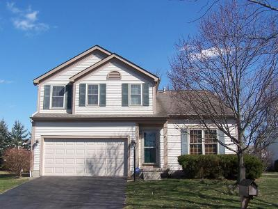 Single Family Home For Sale: 294 Streamwater Court