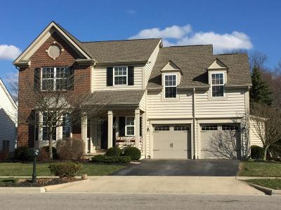 Powell Single Family Home For Sale: 7193 Scioto Chase Boulevard