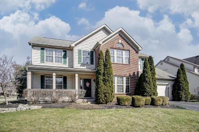 Powell Single Family Home Contingent Finance And Inspect: 7886 Glenmore Drive