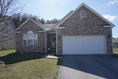 Canal Winchester Single Family Home Contingent Finance And Inspect: 7511 Twisted Bark Drive