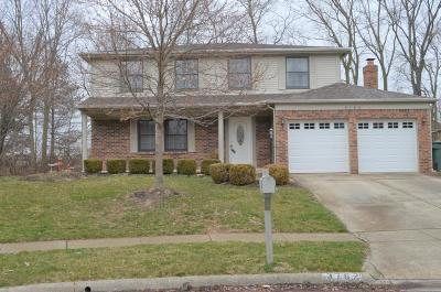 Dublin Single Family Home Contingent Finance And Inspect: 3762 Monahan Lane