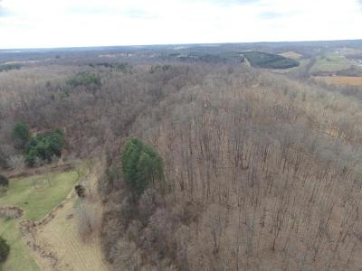 Jackson County Single Family Home For Sale: 282 Franklin Town House Road