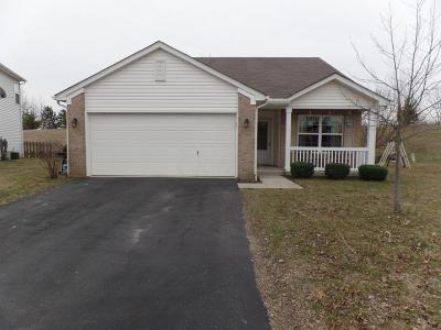 Grove City Single Family Home For Sale: 2175 Hierarch Court