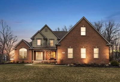 Pickerington Single Family Home Contingent Finance And Inspect: 8214 Meadowmoore Boulevard