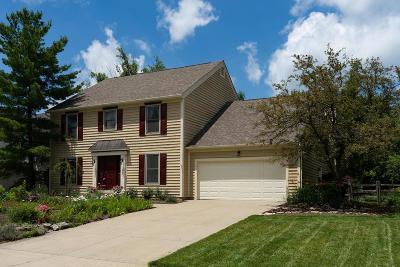 Powell Single Family Home For Sale: 236 Ridge Side Drive
