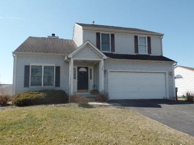 Newark Single Family Home Contingent Finance And Inspect: 1587 S Hunters Drive