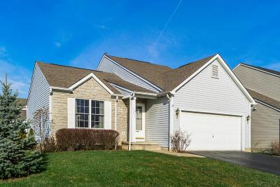 Grove City Single Family Home Contingent Finance And Inspect: 2073 Santuomo Avenue