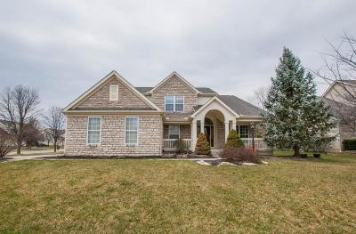 Hilliard Single Family Home For Sale: 4483 Trailane Drive