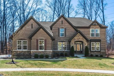 Blacklick Single Family Home Contingent Finance And Inspect: 8183 Clark State Court