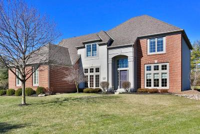 Dublin Single Family Home For Sale: 5785 Courtier Court