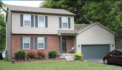 Grove City Single Family Home For Sale: 1944 Dyer Road