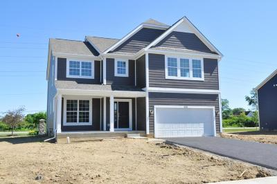 Lewis Center Single Family Home For Sale: 5320 Louden Drive #Lot 8307