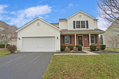 Delaware Single Family Home For Sale: 123 Cheshire Crossing Drive