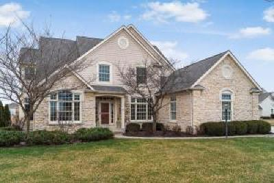 Dublin  Single Family Home For Sale: 6903 Ballantrae Place