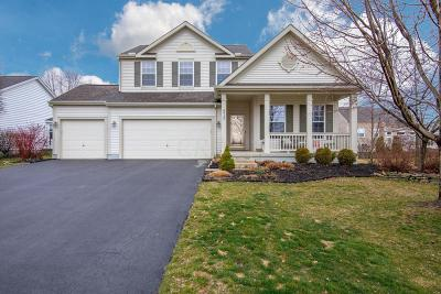 Grove City Single Family Home For Sale: 4915 Snowy Creek Drive