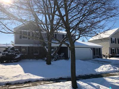 Hilliard Single Family Home Contingent Finance And Inspect: 5679 Rosecliff Drive